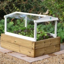 HERB AND SALAD CLOCHE PLANTER